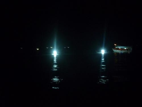 Câu mực đêm ngoài khơi